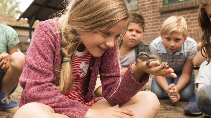 Hilfe, unser Lehrer ist ein Frosch!