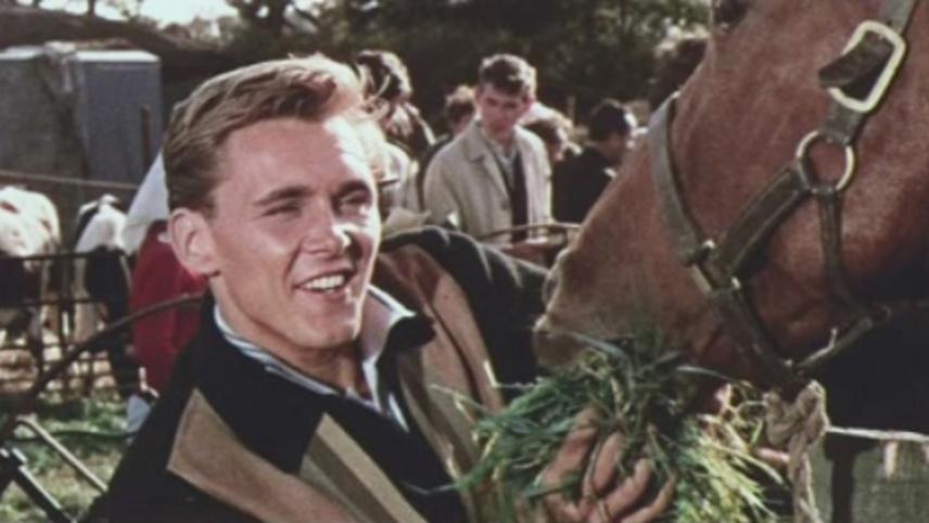 I've Gotta Horse  (Wonderful Day)