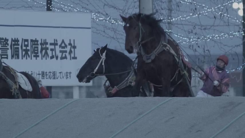 Shiniuma Dead Horse