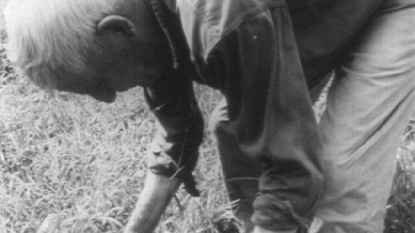 Mountain Farmer
