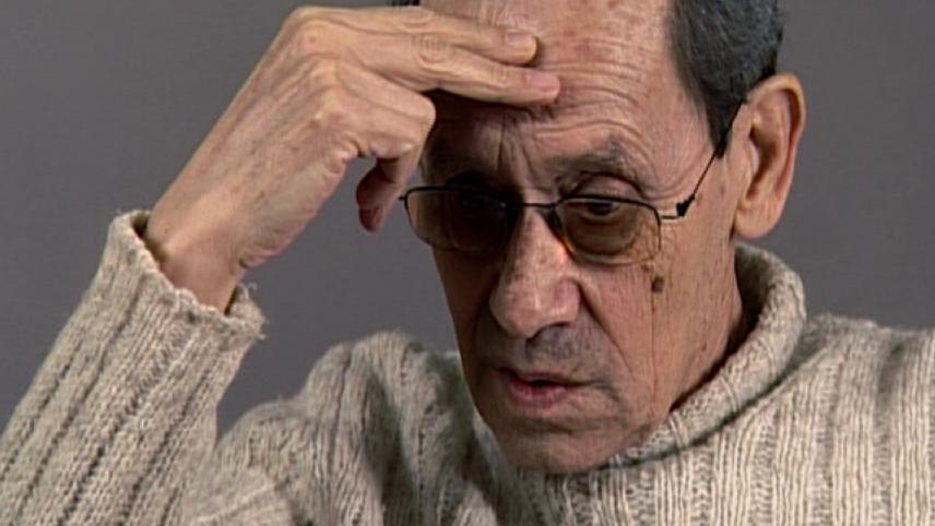 Álvaro Lapa: The Literature