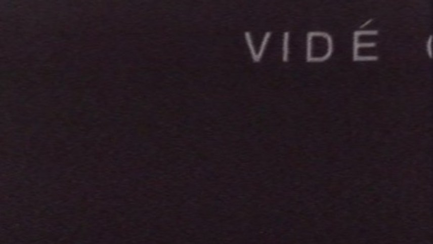 Vidéoème