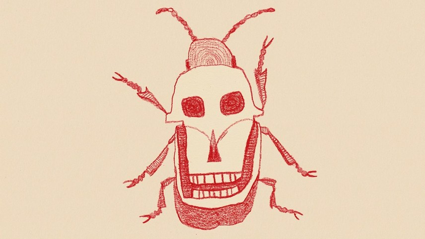 Beetle Trouble