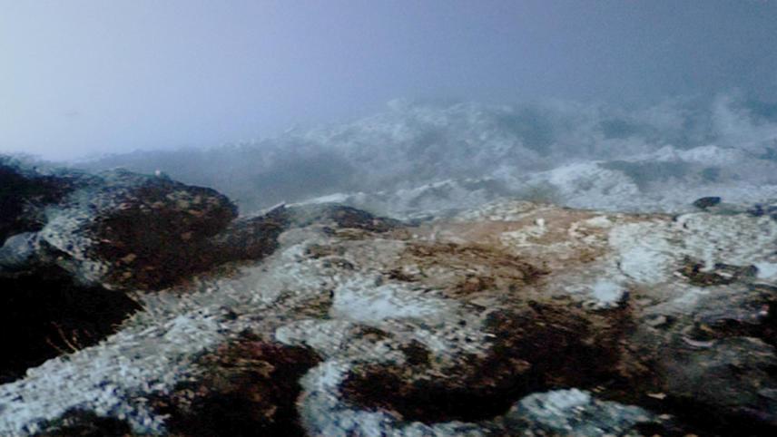 Careless Reef Part 3