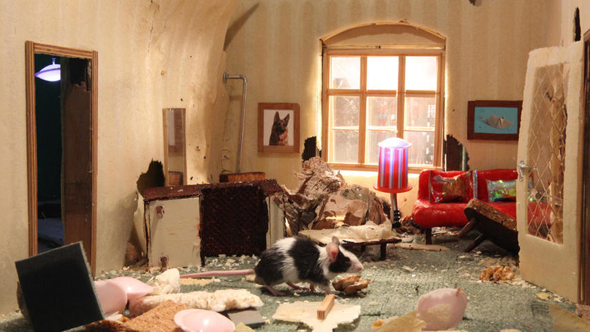 Mouse Palace