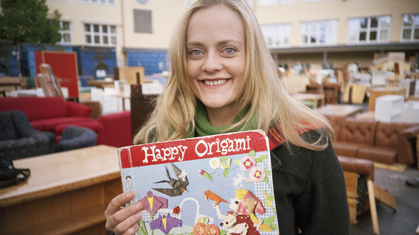 The Professor and the Story of the Origami Girl