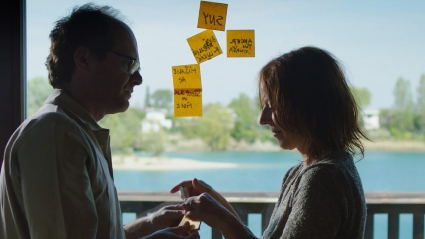 Warm Comedy about Depression, Madness and Unfulfilled Dreams
