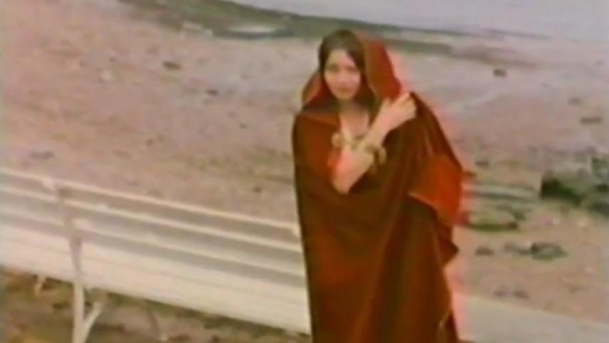 1981 graver amanda by night - 2 5