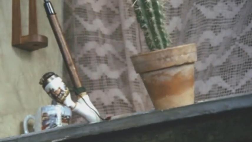 ...Well, Mr. Cactus...?!
