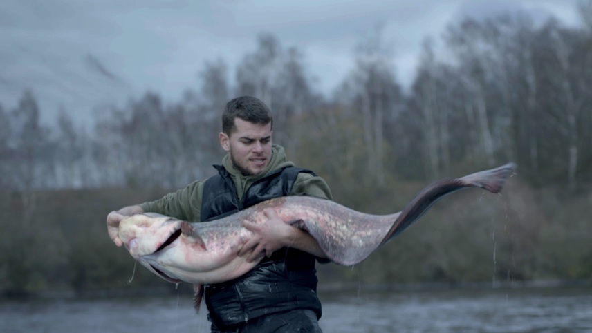 The Kiss of the Catfish