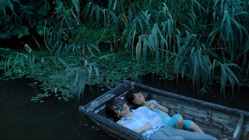 Lush Reeds