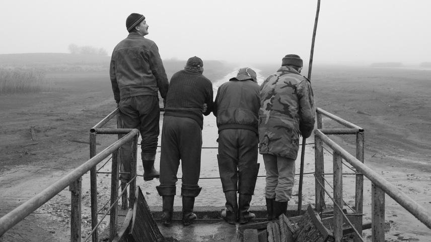 Three Men and a Fish Pond