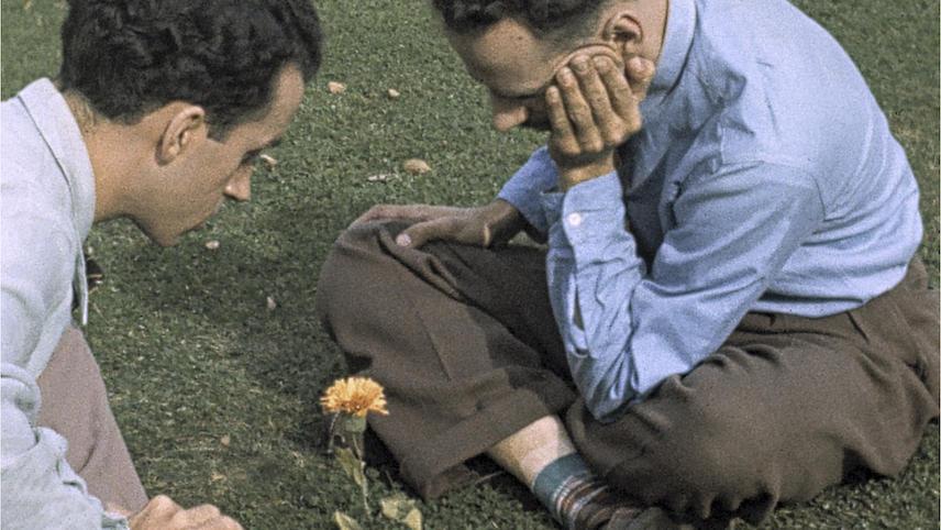 Pas De Deux 1968 Mubi