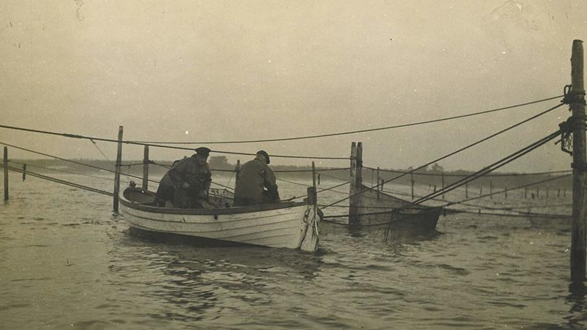 The Danish Solution: The Rescue of the Jews in Denmark