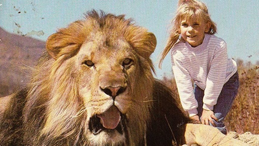 Lions for Breakfast