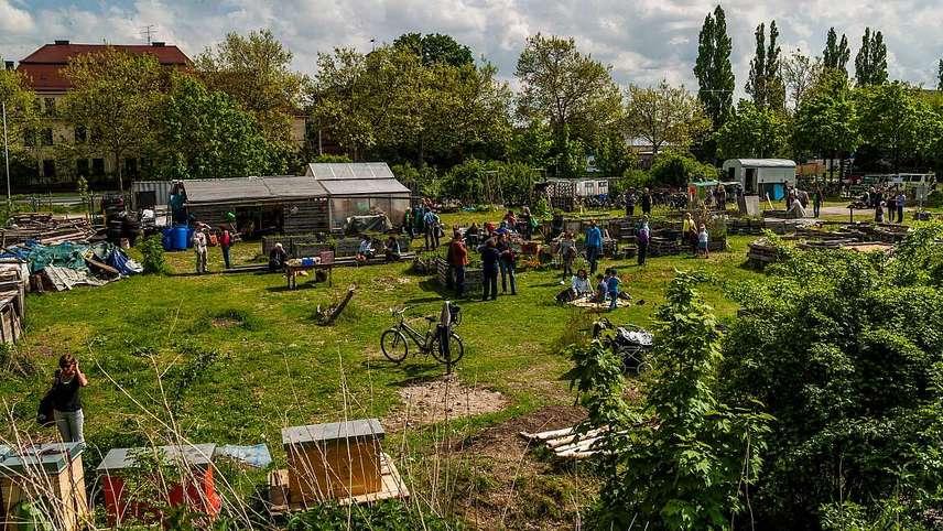 O'pflanzt is - 6 Jahre Gemeinschaftsgarten