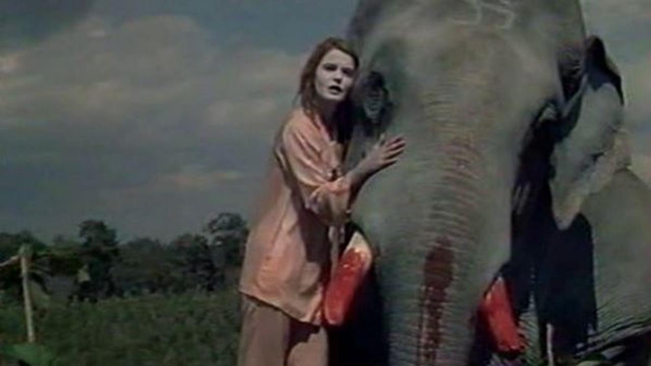 tusk 1980 mubi