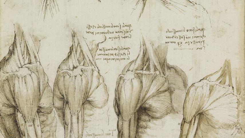Leonardo's Diary