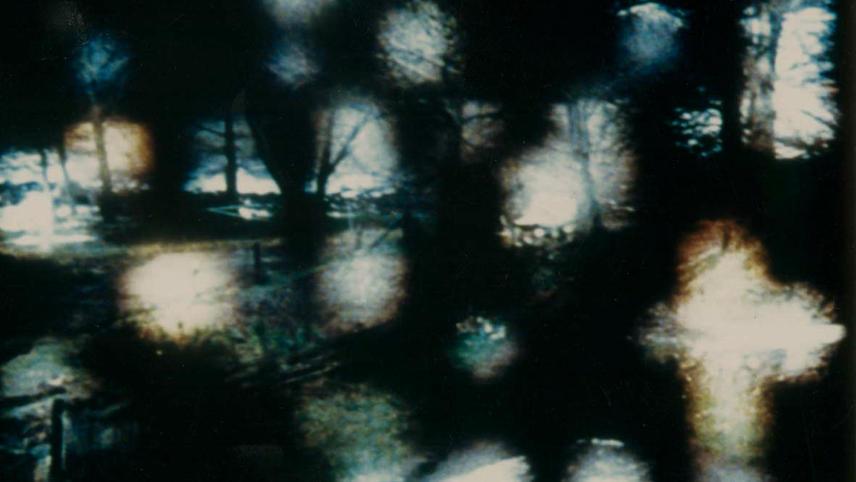 31/75: Asylum