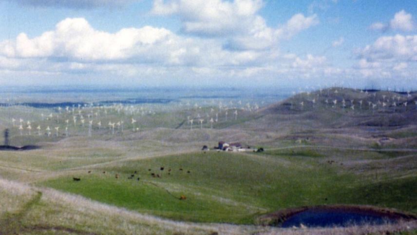 El Valley Centro