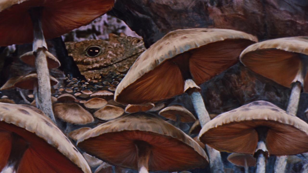Resultado de imagen de Imágenes de Viaje al Centro de la Tierra la película