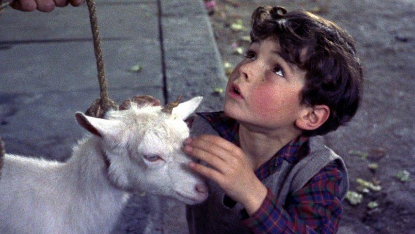 L'enfant et la licorne
