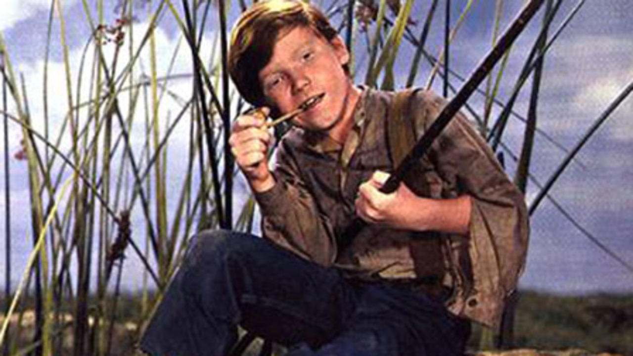 the actions of huck in the adventures of huckleberry finn On mark twain's huckleberry finn mark twain's the adventures of huckleberry finn was banned for the first time just while huck finn is a novel of.