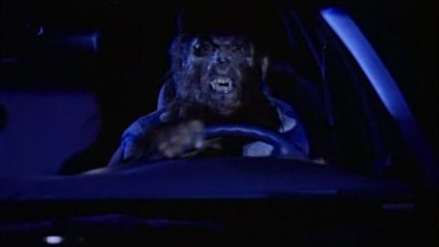 Arizona Werewolf