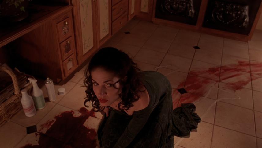 Tú asesina, que nosotras limpiamos la sangre