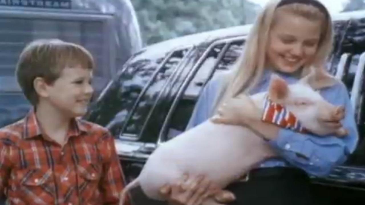 Gordy Movie Cast throughout gordy (1995) - mubi