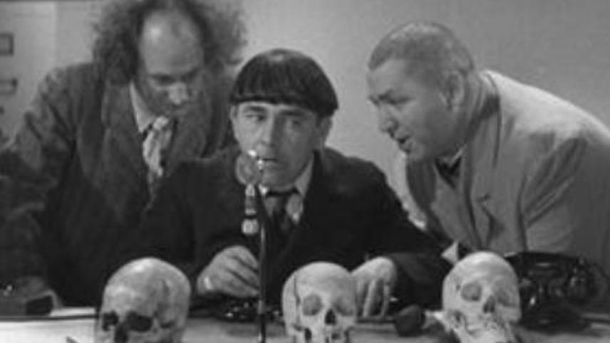 The Three Stooges: Dizzy Doctors