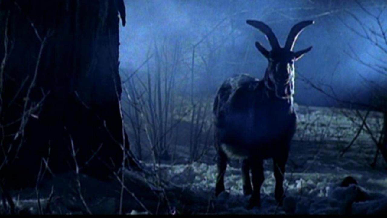Horror (2002) – MUBI