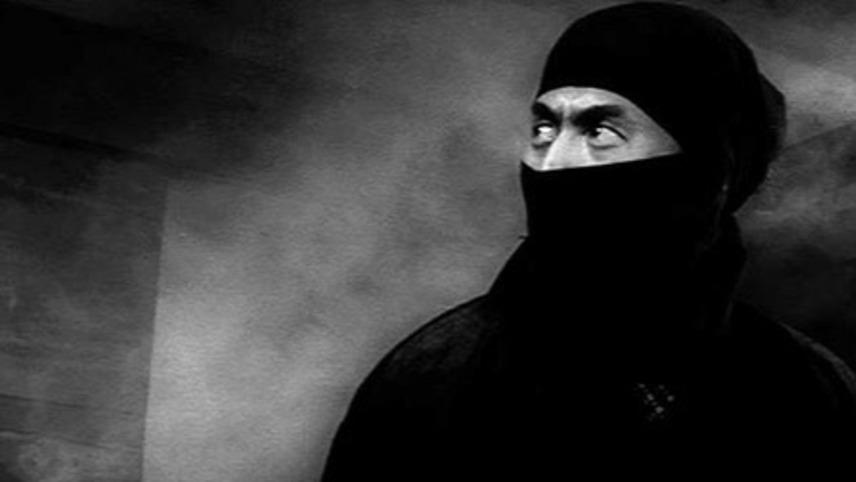 Ninja, a Band of Assassins