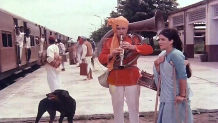 Sacha Jhutha