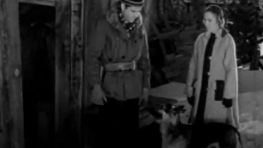 Rin Tin Tin: The Test