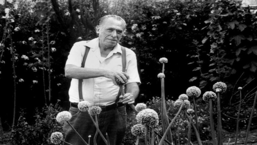 Charles Bukowski Live: There's Gonna Be a God Damn Riot in Here!