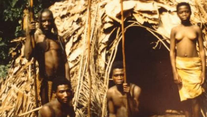Les pygmées Bakas
