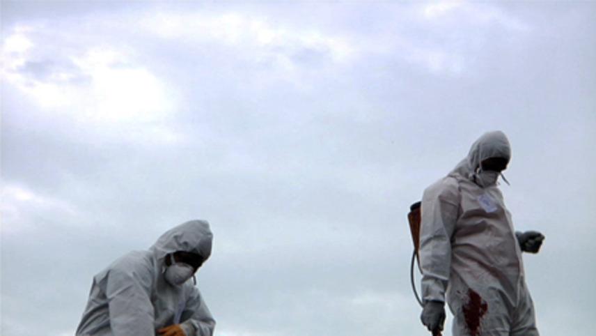 Dust. The Great Asbestos Trial