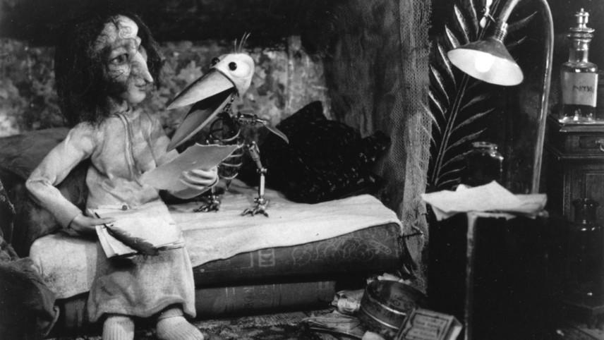 The Chamber Stork
