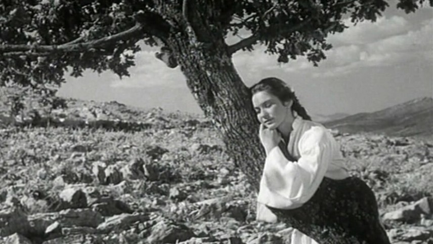 The Girl and the Oak