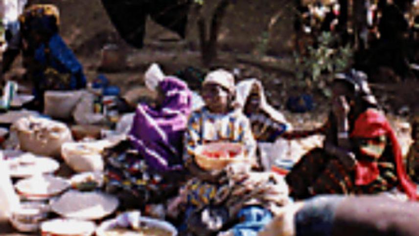 Women of Niger