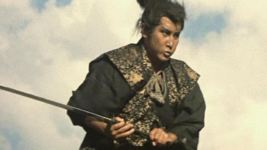 Miyamoto Musashi VI
