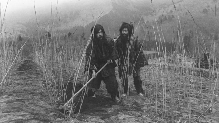 The Men of Tohoku