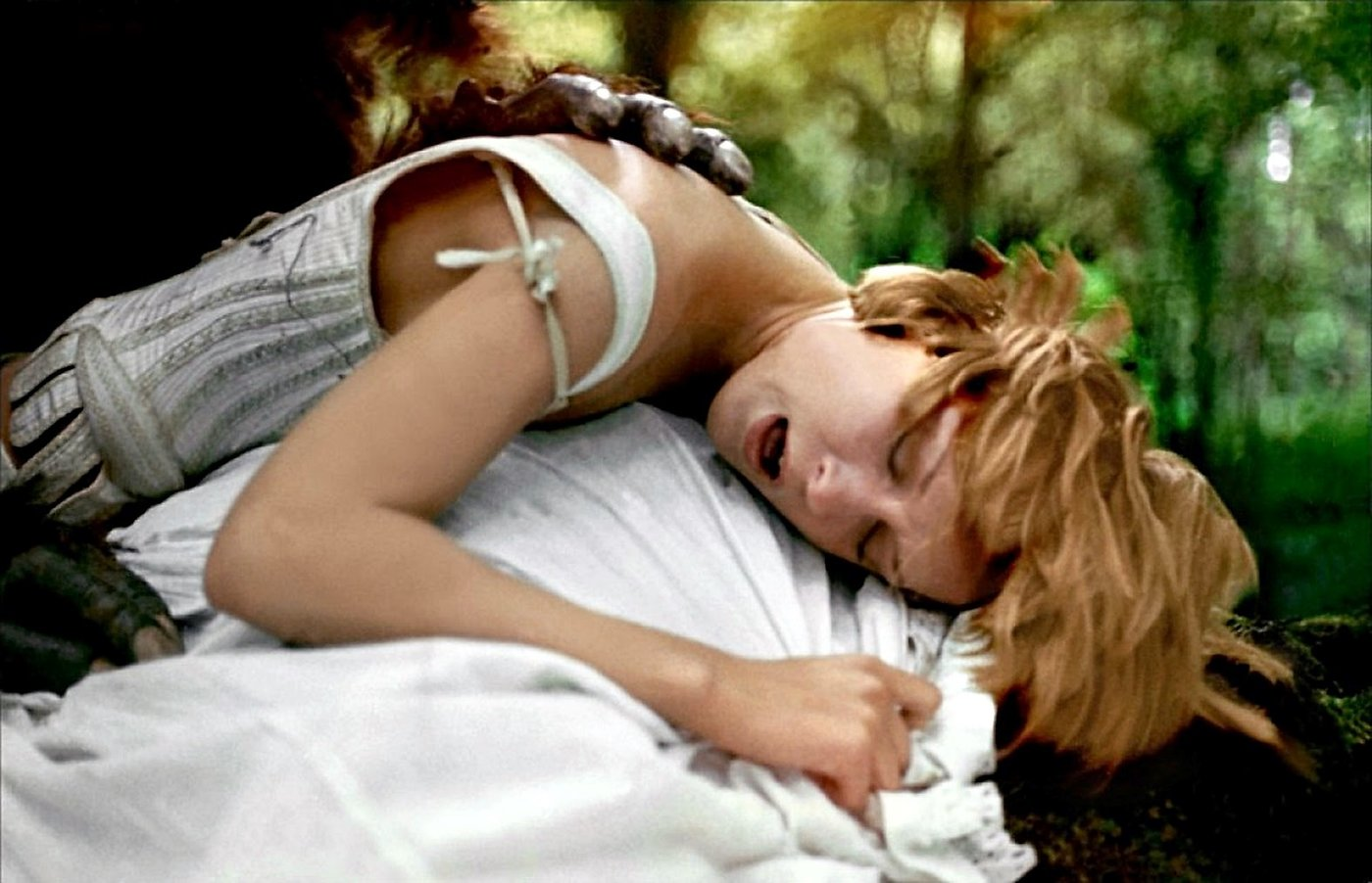 "The Nature of Borowczyk's Passion: Close-Up on ""The Beast"
